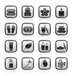 Spa objects icons vector image vector image