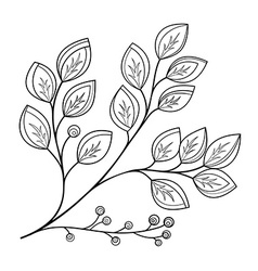 Beautiful monochrome contour leaf vector