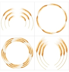 Set of 4 detailed Wheat ears EPS 10 vector image vector image