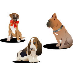 three cute dogs vector image