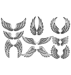 Set of fantasy stylized wings isolated on white vector