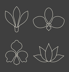 Set of flower line art on dark grey background vector