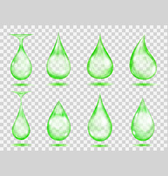 transparent green drops vector image vector image