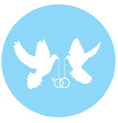 Doves white vector