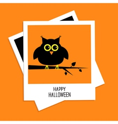 Instant photo with owl happy halloween card flat vector