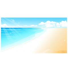 Coastline at beach vector