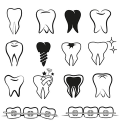 Set of teeth on white black ground vector