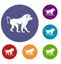 Japanese macaque icons set vector