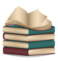 Stack of Books2 vector image vector image