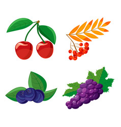 berries icon set cartoon style vector image