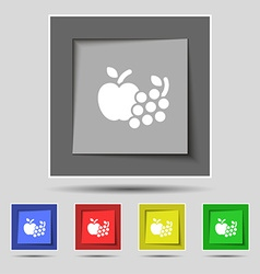 Fruits web icons sign on original five colored vector image vector image