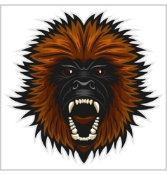 Gorilla head isolated vector