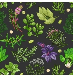 Green pattern with herbs on dark vector