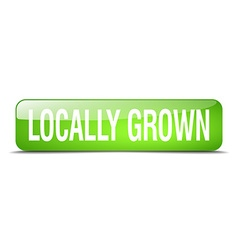 Locally grown green square 3d realistic isolated vector