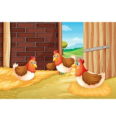 Three chickens nesting vector image vector image