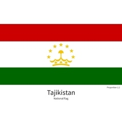 National flag of tajikistan with correct vector