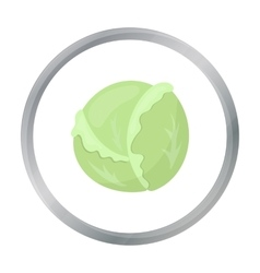 Cabbage icon cartoon singe vegetables icon from vector