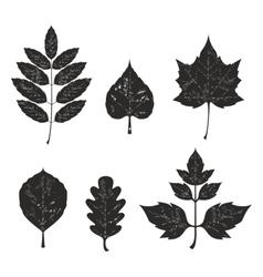 Grunge leaves silhouete set 01 vector