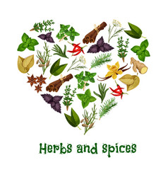 herbs and spices heart poster vector image vector image