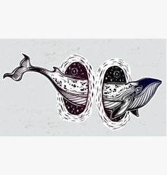 Surreal whale and the magic teleport wormhole vector