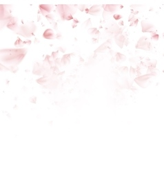 Sakura flying petals on dark background eps 10 vector