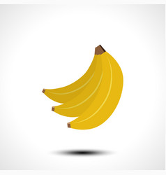 ripe banana isolated on white background vector image vector image