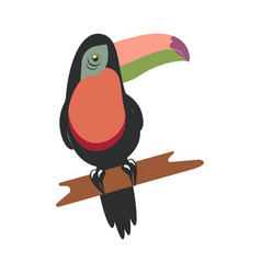 tucan on white background vector image vector image