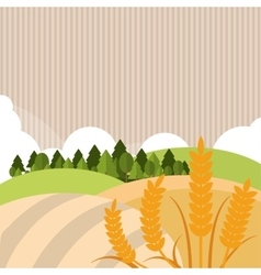 Wheat icon landscape design Agriculture concept vector image