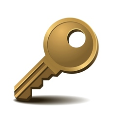 Golden key vector