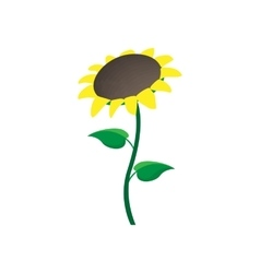 Sunflower icon cartoon style vector image