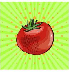 tomato vegetable pop art food eco vector image vector image