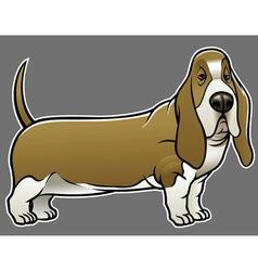 basset hound dog vector image