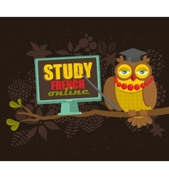 Owl on the tree study french concept vector