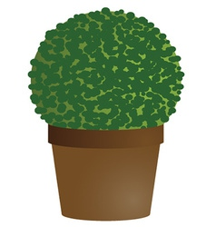 Amenity tree in pot vector