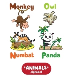 Animals alphabet or abc vector