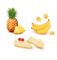 Set of different fruit and desert pineapple vector