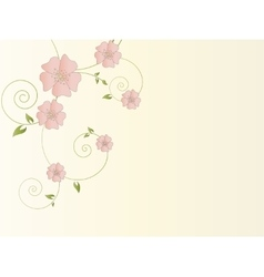 Abstract floral background with flowers vector image