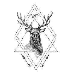 Black and white isolated deer vector