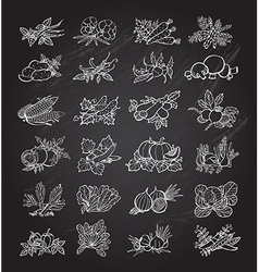 hand drawn vegetables set vector image