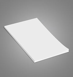 White Brochure vector image