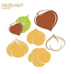 Hazelnut Icon set vector image vector image