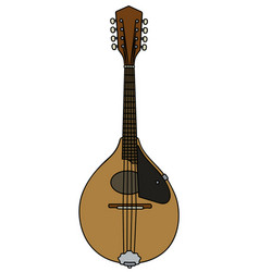 Modern small mandolin vector