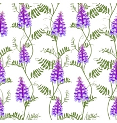 Seamless pattern wildflowers bindweed bird vetch vector