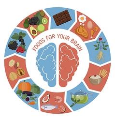 Brain foods infographics vector