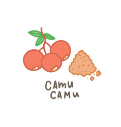 Camu camu powder superfood vector