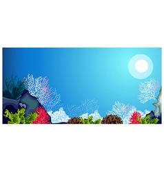 Underwater carols and weeds vector