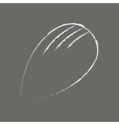 Almond hand drawn in chalk on a blackboard on grey vector