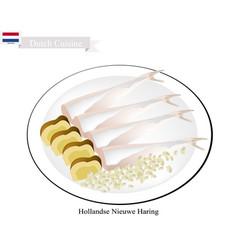 Hollandse nieuwe haring a popular food in netherl vector