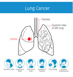 Human lungs outline and lung cancer symptoms vector