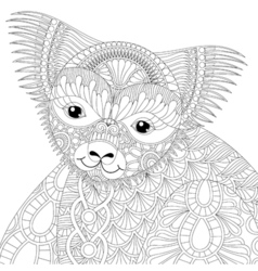 Zentangle happy friendly koala for adult anti vector